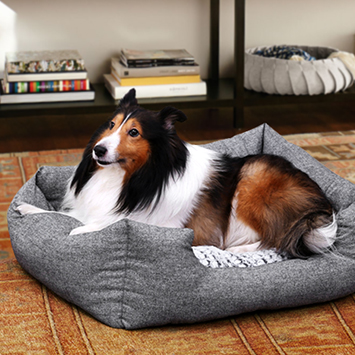 FEANDREA Dog Bed